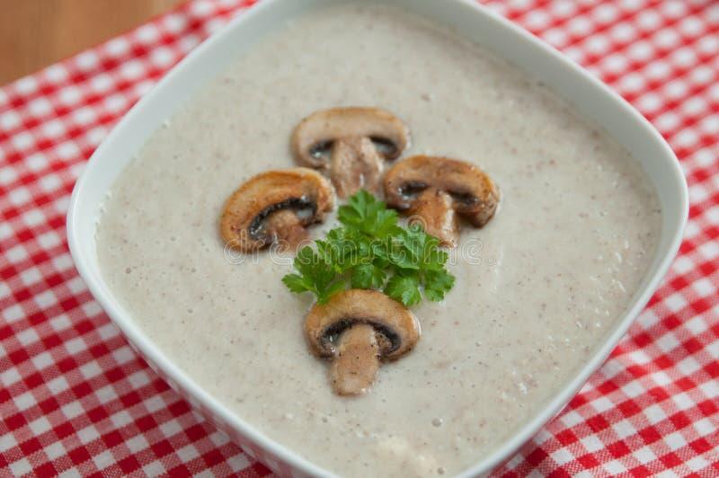 Cream of Mushroom Soup royalty free stock image