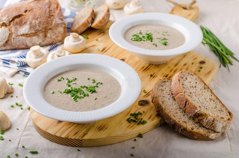 Download Cream of mushroom soup stock photo. Image of champignon - 75052400