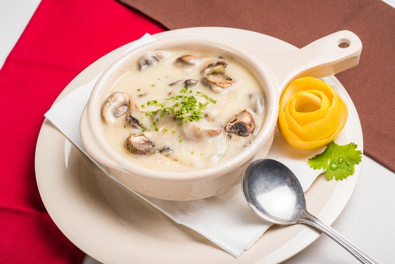 Cream of Mushrooms royalty free stock image