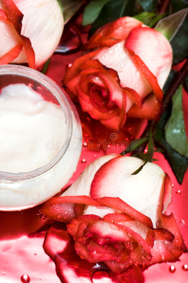 Cream with roses stock photography