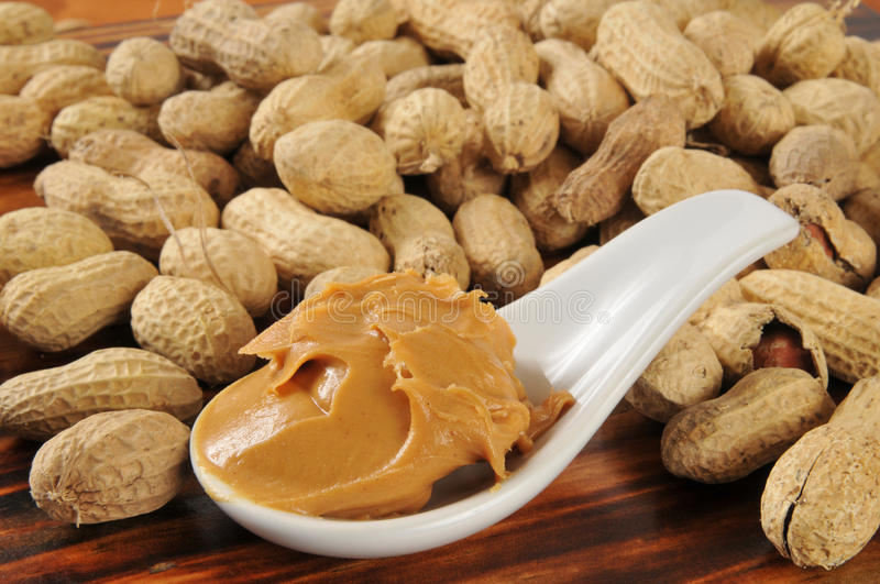 Creamy peanut butter. A spoonful of creamy peanut butter with peanuts in the shells in the background stock photos
