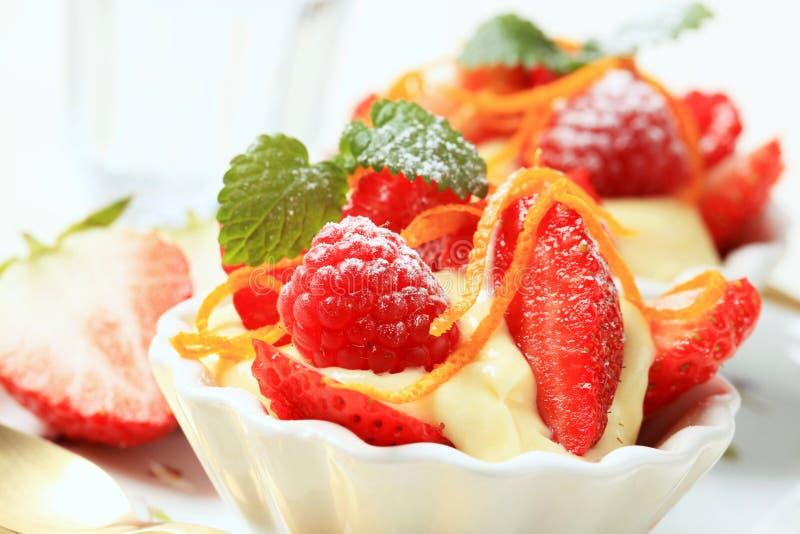 Creamy pudding with fresh fruit royalty free stock image