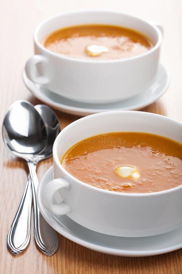 Download Creamy vegetable soup stock photo. Image of liquid, fresh - 18535294