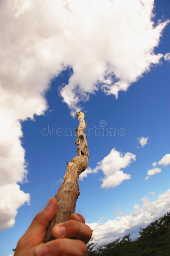 Create Nature royalty free stock image