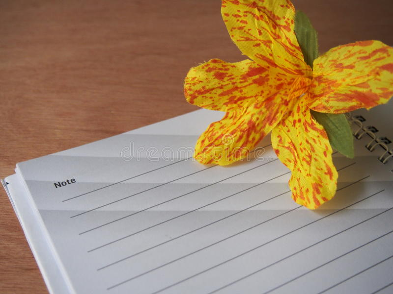 Created canna flower with blank page of notebook royalty free stock photos