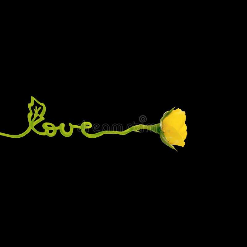 Creatief die concept van gele roze bloem met woordliefde wordt gemaakt Vlak leg Het concept van de Dag van valentijnskaarten royalty-vrije illustratie