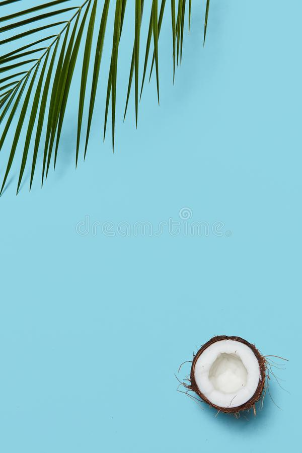 Creatief die kader van palmblad en kokosnoten de helften op een blauwe achtergrond met exemplaarruimte wordt gemaakt Vlak leg royalty-vrije stock afbeeldingen