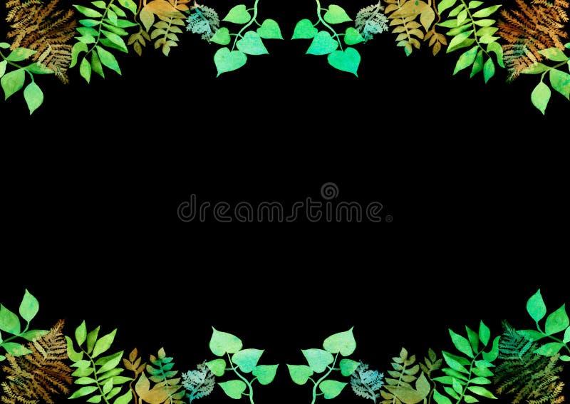 Creatief kader voor ontwerp van affiche, banner, kaarten Trillende hand geschilderde waterverf kruidenelementen groene Bladeren B stock illustratie