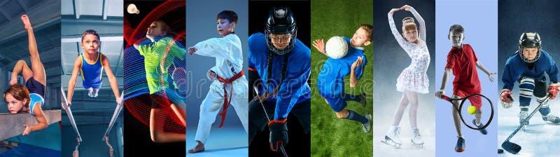 Creatieve collage die met verschillende soorten sport wordt gemaakt stock foto's