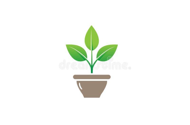 Creatieve de Komvaas Logo Design Symbol Vector Illustration van de Bloeminstallatie stock illustratie
