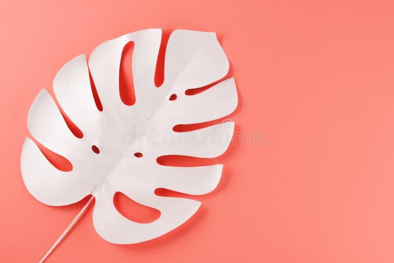Creatieve decoratieve samenstelling - witte monstera op een roze achtergrond Conceptuele fotografie stock foto