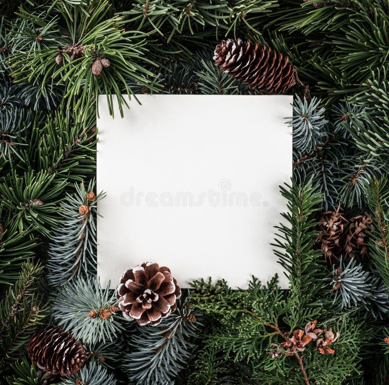 Creatieve die lay-out van Kerstboomtakken wordt gemaakt met document kaartnota, denneappels Kerstmis en Nieuwjaarthema royalty-vrije stock fotografie