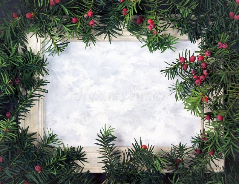 Creatieve die lay-out van Kerstboomtakken wordt gemaakt met rode berri royalty-vrije stock foto