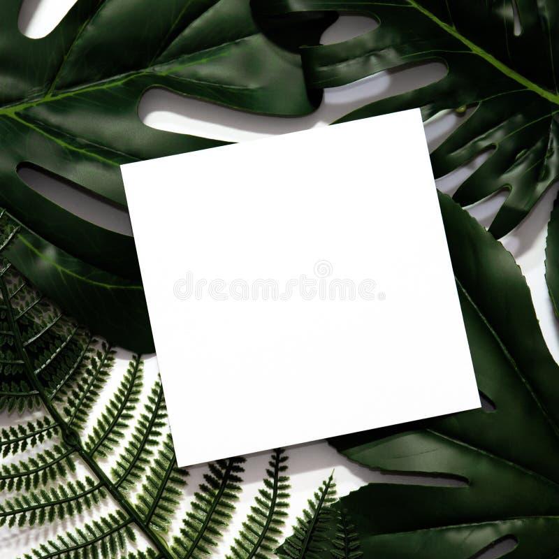 Creatieve die lay-out van tropische bladeren wordt gemaakt royalty-vrije stock foto