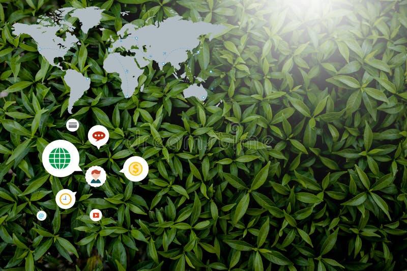 Creatieve die stijl van bloemen en bladeren met nota's wordt gemaakt die vlak liggen royalty-vrije stock foto's