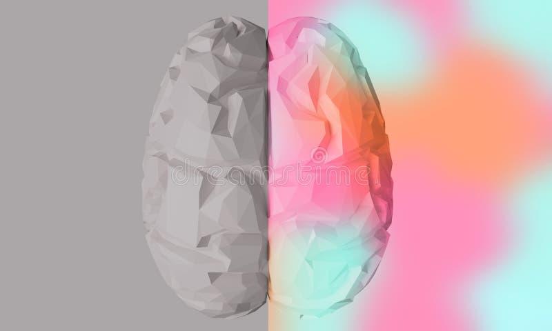 Creatieve en logische deel menselijke hersenen het 3d teruggeven stock illustratie