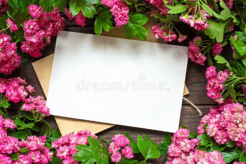 Creatieve het brandmerken spot tot vertoning uw kunstwerken lege groetkaart met roze bloemen stock afbeelding