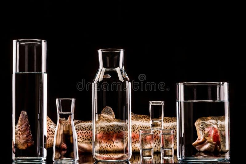 Creatieve het productfoto van forelvissen stock foto's