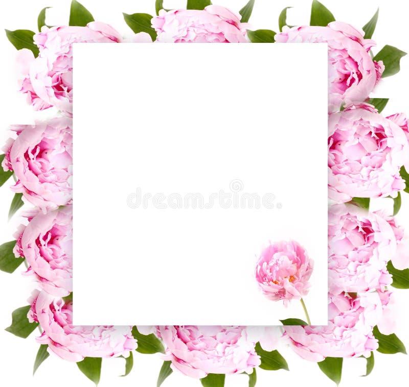 Creatieve lay-out met bloemenornament stock afbeeldingen
