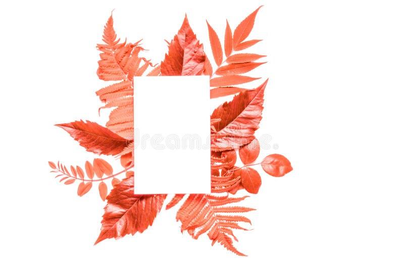 Creatieve lay-out met het Leven de bladeren van de Koraalkleur en lege witte groetkaart Pantonekleur van het jaar 2019 stock foto's