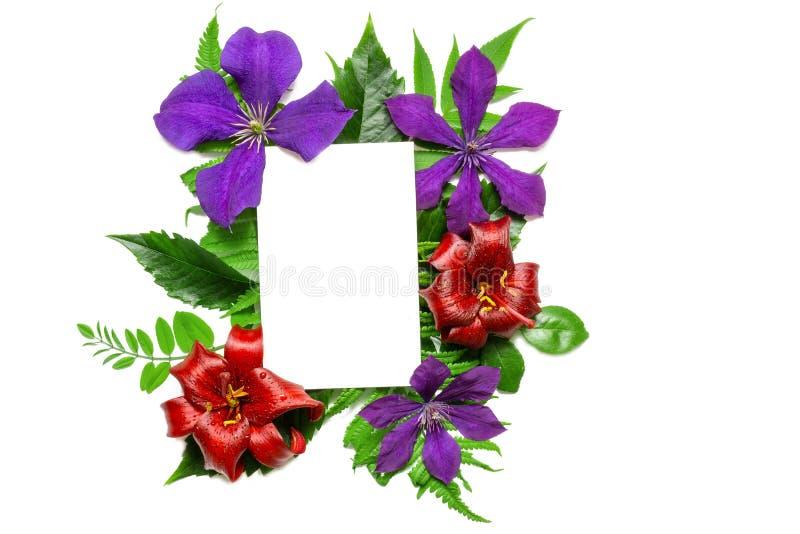 Creatieve lay-out met kleurrijke bloemen, bladeren en lege die groetkaart op witte achtergrond worden geïsoleerd Het concept van  royalty-vrije stock foto's