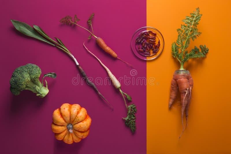 Creatieve Lay-out van Diverse Groenten op Dubbele Kleurenachtergrond stock foto