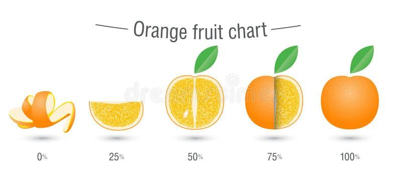Creatieve oranje fruitgrafiek vector illustratie