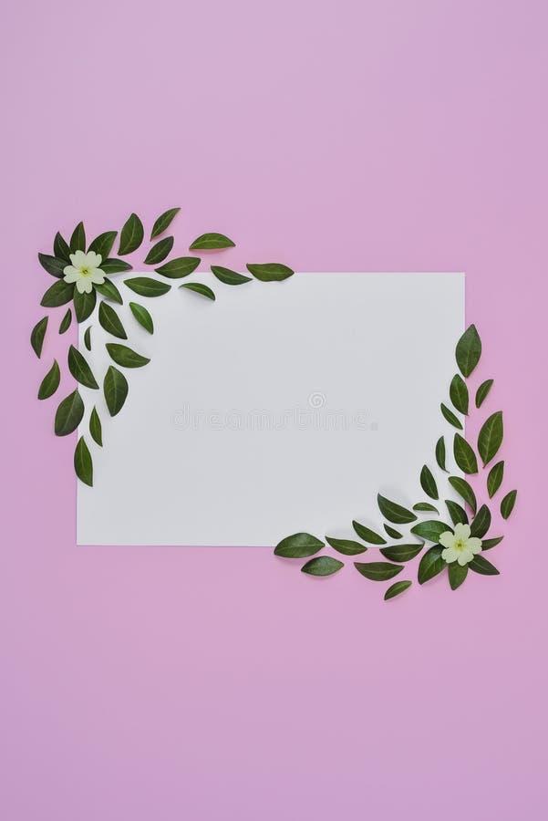 Creatieve samenstelling Groene bladeren, gele bloem, document spatie op pastelkleur roze achtergrond Het concept van de zomer Vla royalty-vrije stock foto's