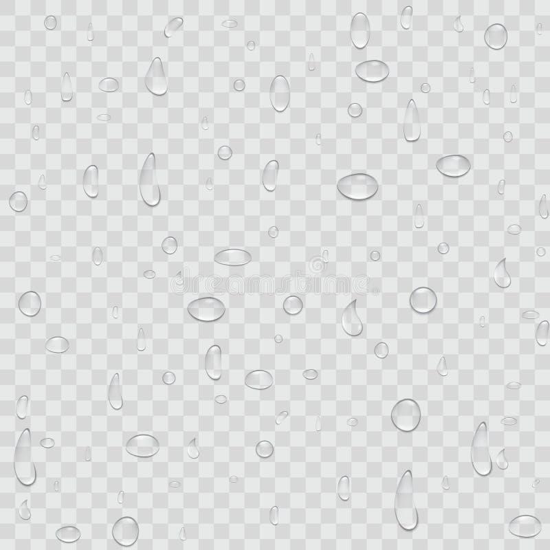 Creatieve vectorillustratie van de zuivere duidelijke die dalingen van de waterregen op transparante achtergrond worden geïsoleer royalty-vrije illustratie
