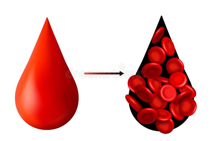 Creatieve vectorillustratie van rode bloedcellenstroom, microbiologische medische die erytrociet op wit wordt geïsoleerd stock illustratie