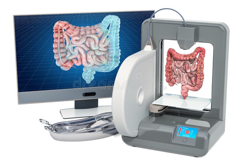 Creating artificial bowel on three dimensional printer, 3d printing in medicine concept. 3D rendering vector illustration