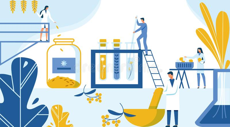 Creation New Formula Drugs from Plant Materials. Strategy and Tehnology Creating New Drug from Ecological Herbs and Plants. Scientists Put in Test Tubes and royalty free illustration