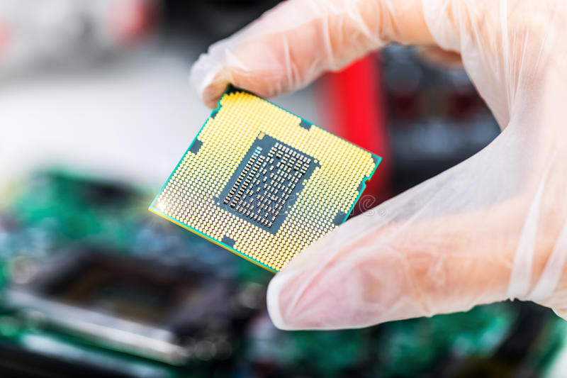CPU processor in hand royalty free stock photo