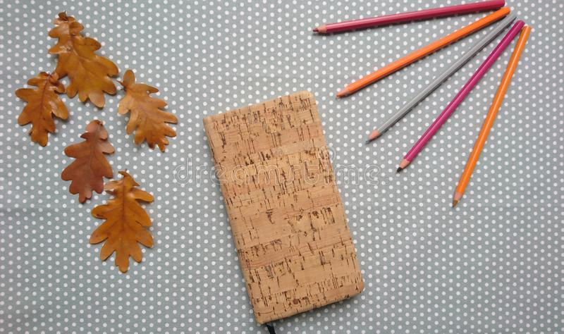 Creative autumn composition, flat lay, a top view mockup to display your artwork, orange oak leaves, natural notebook, colored royalty free stock photos