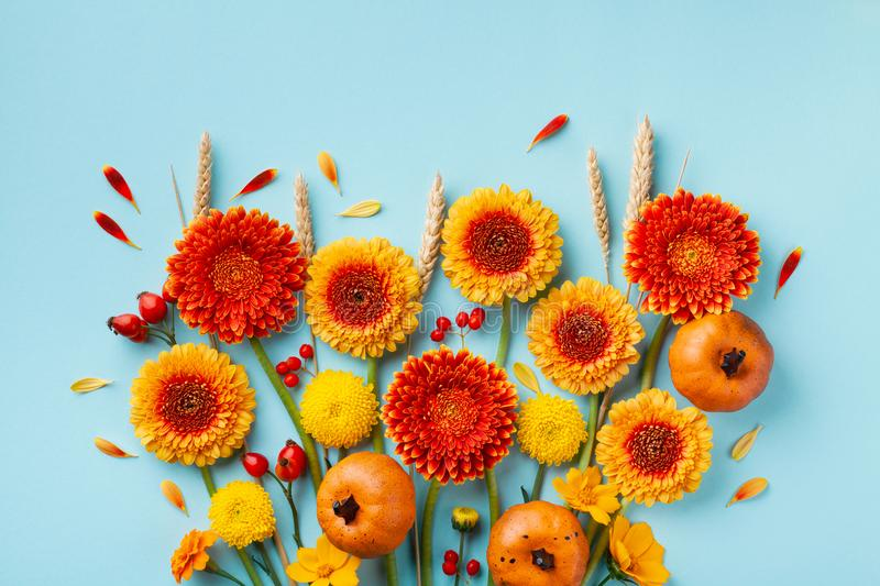 Creative autumn nature composition with orange and yellow gerbera flowers, decorative pumpkins, wheat ears. Thanksgiving day stock photo