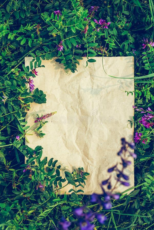 Creative background craft paper in green natural grass. Concept ecological. Creative green floral background of natural leaves and meadow grass. Kraft paper stock image