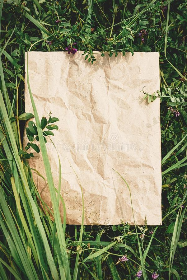 Creative background from craft paper in green natural grass. Concept of ecological products, nature royalty free stock photo