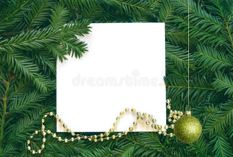 Creative background of pine branch with white paper card. New Year and Merry Christmas Concept. stock image