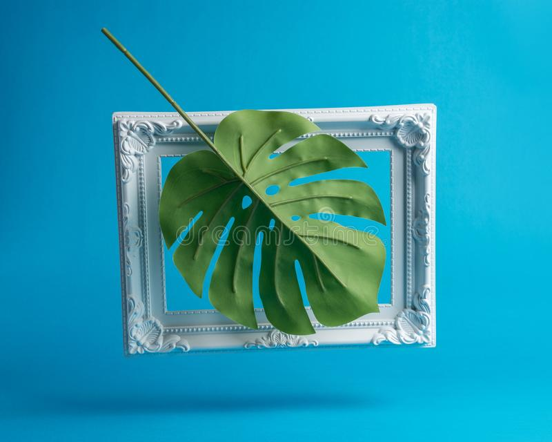 Creative composition made of palm leaf with vintage frame. Minimal summer concept royalty free stock images
