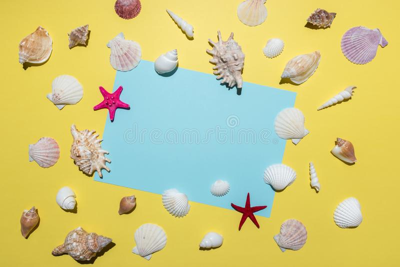 Creative composition with seashells and blue paper card on bright yellow background. Summer minimal concept.  royalty free stock photography