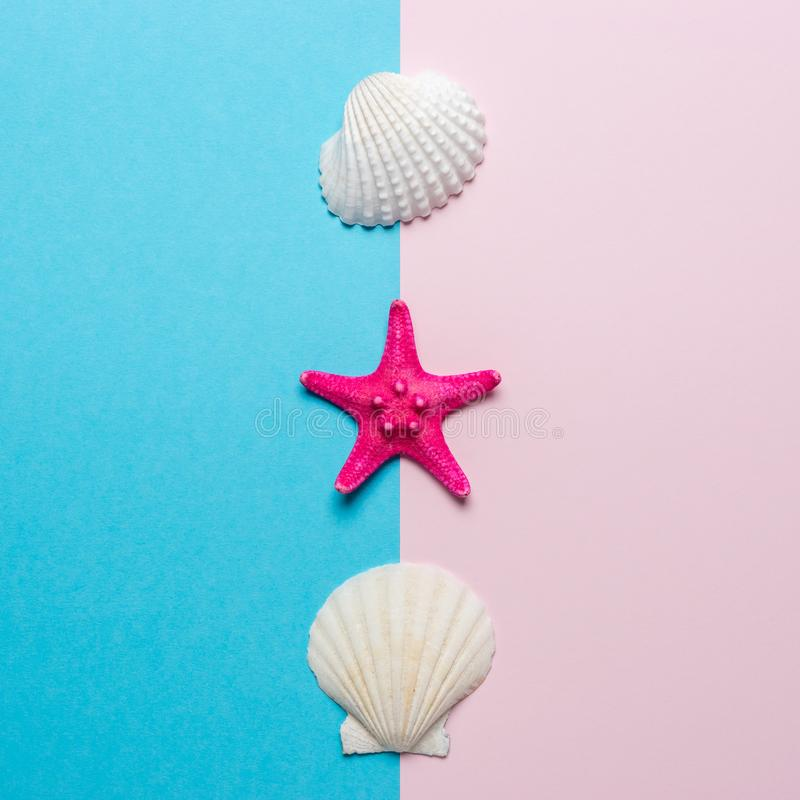 Creative composition with seashells and red starfish on bright background. Summer minimal concept.  royalty free stock images
