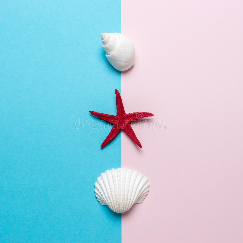Creative composition with seashells and red starfish on bright background. Summer minimal concept.  stock photography