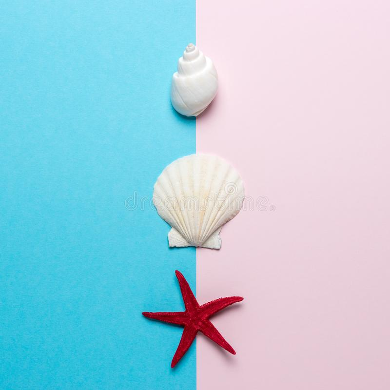 Creative composition with seashells and red starfish on bright background. Summer minimal concept.  royalty free stock photo