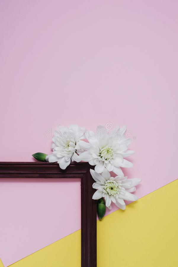 Creative composition with spring flowers. White flowers and wooden frame on pastel pink and yellow background. Flat lay, top view royalty free stock photos