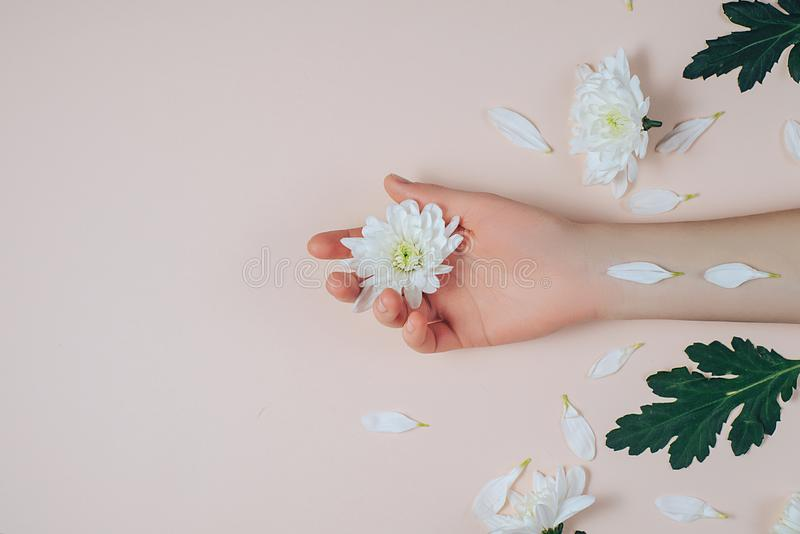 Creative and fashion art skin care of hands and white flowers in hand of women. Female hand with white flowers on pink background. Cosmetics for hands anti stock photo