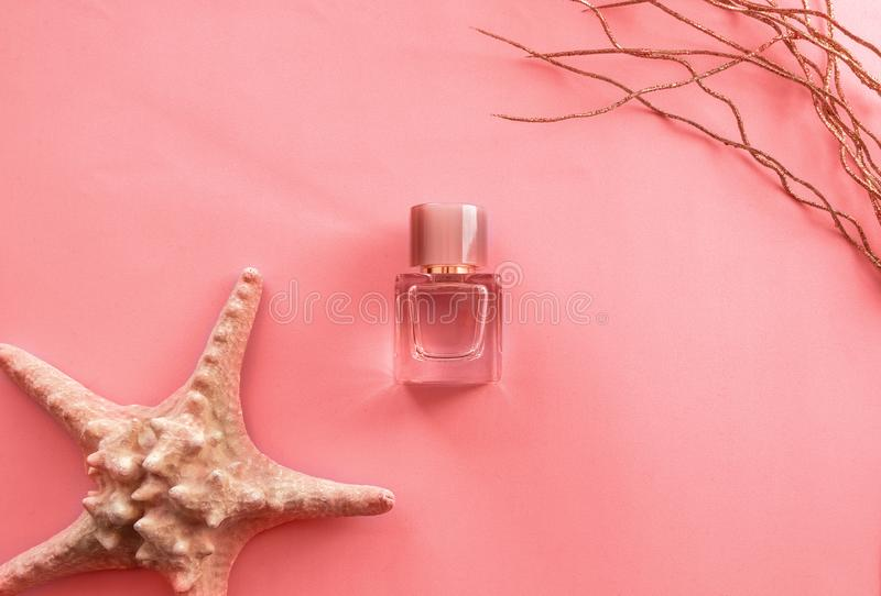 Creative fashion objects- women`s perfume and coral starfish on pink background. Top view, flat lay stock photos