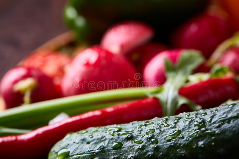 Creative fresh vegetable salad with ruccola, cucumber, tomatoes and raddish on white plate, selective focus royalty free stock image