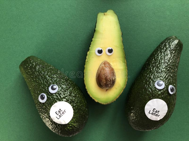 Creative funny food concept, avocados stock images