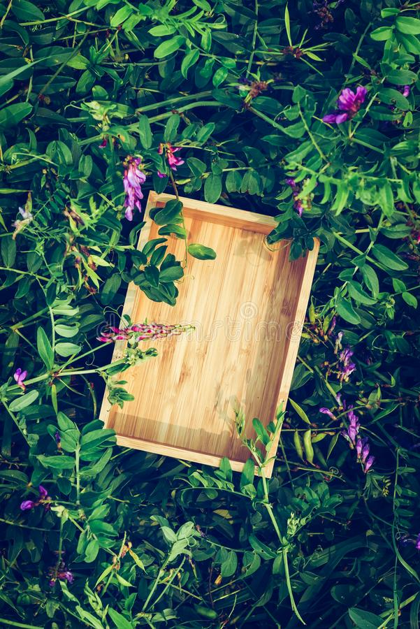 Creative green floral background from natural plants. Box of wood frame. Creative green floral background of natural leaves and meadow grass. Kraft paper frame stock images