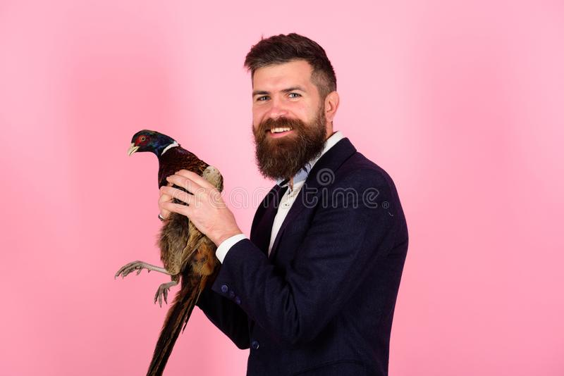Creative idea. Bird flu. Funny advertising. happy man hold pheasant. Bearded businessman. Hipster. Crazy man on pink stock images